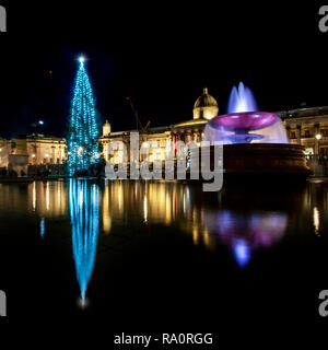 Trafalgar Square's annual Christmas Tree from Norway with the National Gallery in the background. - Stock Photo