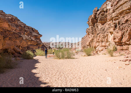 Colored canyon in Nuweiba Dahab Egypt . Coloured Canyon is a rock formation on Sinai peninsula. It is a labyrinth of rocks, some of them have about 40 - Stock Photo