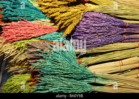 Colorful natural paddy rice dyed in red, yellow and purple - Stock Photo