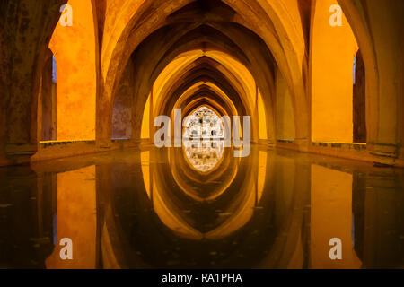 Spain, Andalusia, Sevilla, Real Alcazar (Royal Alcazar of Seville) interior, baths of Dona Maria de Padilla rainwater tank, UNESCO World Heritage Site - Stock Photo