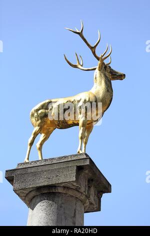 20.04.2018, Berlin, Berlin, Deutschland, Goldener Hirsch im Rudolph-Wilde-Park. 00S180420D079CARO.JPG [MODEL RELEASE: NOT APPLICABLE, PROPERTY RELEASE - Stock Photo
