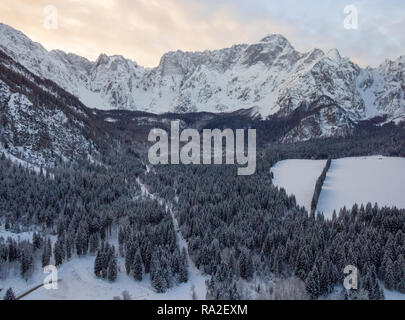 Aerial photo of beautiful winter landscape with snow covered trees in Italy - Stock Photo