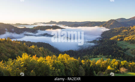 Aerial photo of thick fog covering the forest and the lake in early morning landscape. - Stock Photo