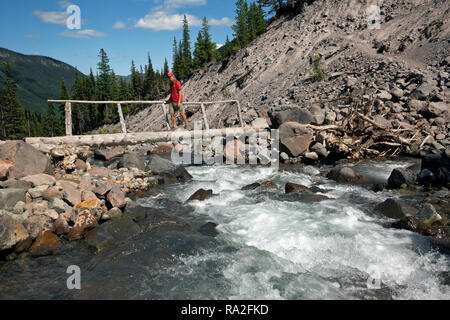WA15619-00...WASHINGTON - Hiker crossing a log bridge over the Inter Fork on the Emmons Moraine Trail in the White River Valley of Mount Rainier Natio - Stock Photo