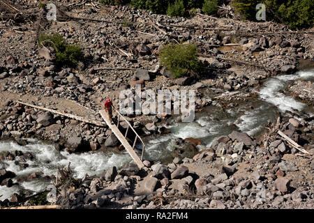 WA15624-00...WASHINGTON - Hiker crossing log bridge over the Inner Fork of the White River on the Emmons Moraine Trail in Mount Rainier National Park. - Stock Photo