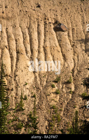 WA15625-00...WASHINGTON - Erosion patterning the hillside above the Inter Fork of the White River viewed from the Glacier Basin Trail in Mount Rainier - Stock Photo