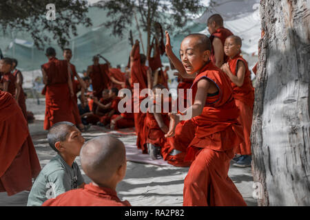 Young buddhist monks traditional debate at the Samstanling monastery in Sumur, Nubra valley, Ladakh, Jammu and Kashmir, India, July 19, 2018. (CTK Pho - Stock Photo