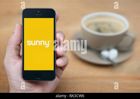 A man looks at his iPhone which displays the Sunny logo (Editorial use only). - Stock Photo