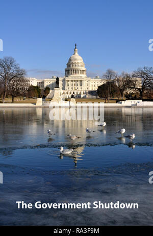 Frozen Government Shutdown Political Satire showing the US Capitol with Iced Reflecting Pool and Seagulls, Washington DC, Winter, January 15, 2018 - Stock Photo
