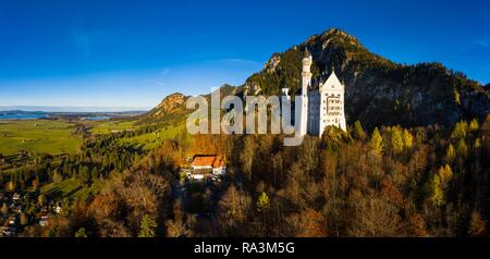Drone shot, Neuschwanstein Castle in autumn, Forggensee in the back, Schwangau, Ostallgäu, Allgäu, Swabia, Upper Bavaria - Stock Photo