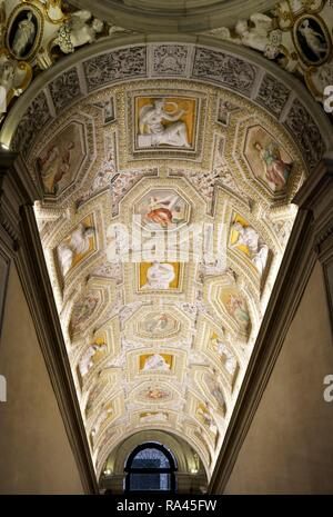 Vaulted ceiling, Museo Correr, municipal museum, Piazza San Marco, Piazza San Marco, Venice, Veneto, Italy - Stock Photo