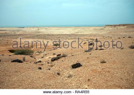 Western sahara stone desert and Atlantic ocean - Stock Photo