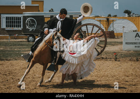 TRUJILLO, PERU - SEPTEMBER 2018 : Peruvian woman in traditional white carnival dress dancing with cowboy riding a horse during outdoor performance - Stock Photo