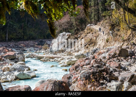 Trekkers walking beside a glacial river on the Manaslu Circuit trek, Nepal Himalayas - Stock Photo