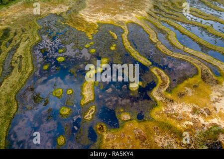 Drone shot, moor landscape, wetland, abstract structures, Junsele, Västernorrlands län, Sweden Stock Photo