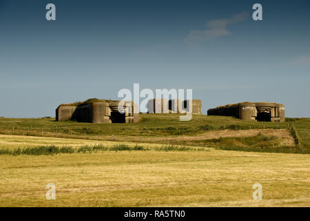German WWII defence bunkers part of The Atlantic Wall at Waringzelle, Nord Pas de Calais, France - Stock Photo