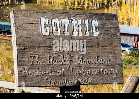 Rocky Mountains Biological Library area along Gothic Road in Colorado. - Stock Photo