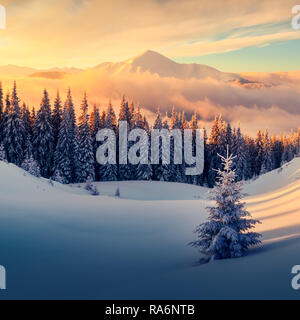 Fantastic orange winter landscape in snowy mountains glowing by sunlight. Dramatic wintry scene with snowy trees. Christmas holiday concept. Carpathians mountain, Ukraine, Europe Stock Photo