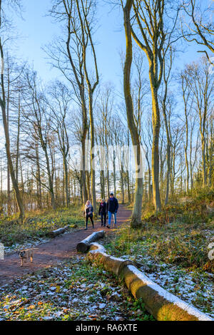 3 people (adults) walking on quiet scenic countryside path with small dog on cold snowy winter day - Fewston Reservoir, North Yorkshire, England, UK. - Stock Photo