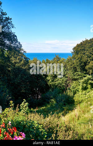 View from the slope to the Baltic Sea. In Lohme on the island of Rügen. - Stock Photo