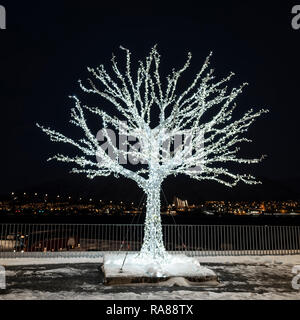 Festive Illuminated tree, Tromso, Norway. - Stock Photo