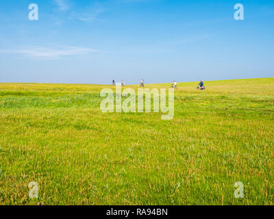 People riding bicycles on dike with grass field on a sunny day with blue sky, Schiermonnikoog, Netherlands - Stock Photo