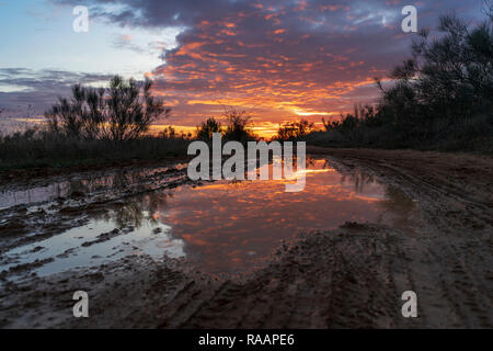 Sunset reflected on a puddle of a path in the field, with orange, yellow and blue colors at winter. Los Santos de la Humosa, Madrid, Spain. - Stock Photo