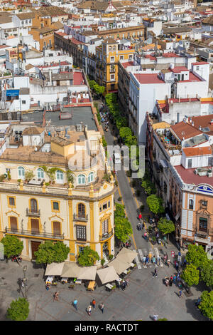 View from the Giralda Bell Tower down to the Virgen de los Reyes square, Seville, Andalusia, Spain, Europe - Stock Photo