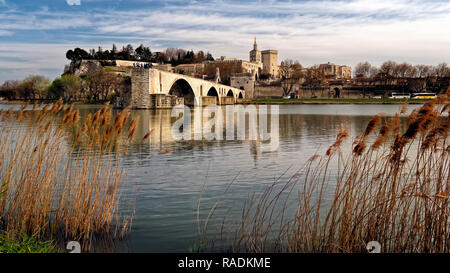 A view of the medieval bridge through rushes on the river Rhone from Pont Saint-Benezet Avignon et Provence across the river Rhone from the river. - Stock Photo