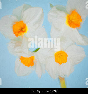 Photo illustration of a purple tulip - Stock Photo