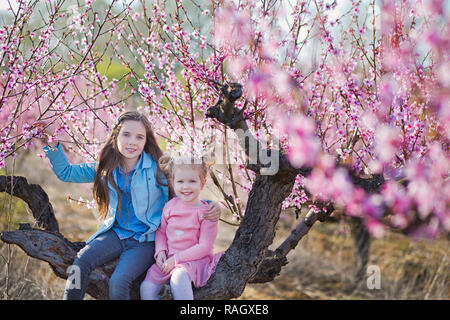 Cute beautiful stylish dressed brunette and blond girls sisters standing on a field of spring young peach tree with pink flowers.Lady dressed in jeans - Stock Photo