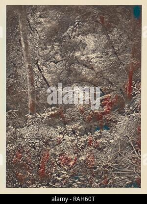 Forest, Arthur Brown (British, active 1850s), Newcastle upon Tyne, England, 1878, Carbon print, 9.6 x 7.1 cm (3 3,4 x reimagined - Stock Photo