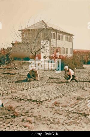 Zionist colonies on Sharon. Borochov. Girls' farm, potting plants. 1920, Israel. Reimagined by Gibon. Classic art reimagined - Stock Photo