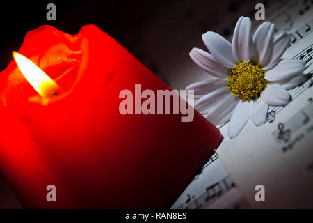 Flower Daisy Music Notes Sheets and Candle Light - Stock Photo