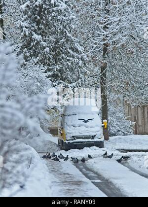 Snow covered the road, and road services do not clean the roads. Also, snow removal is prevented by cars abandoned on the streets. - Stock Photo