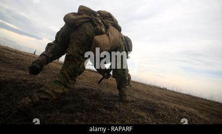 A U.S. Marine with Black Sea Rotational Force 17.1 jumps out of his position to move during a run through of an upcoming live-fire range aboard Smardan Training Area, Romania, Feb. 23, 2017. The event was a part of Exercise Platinum Eagle, a multi-national exercise with allies in the Black Sea region to increase interoperability through combined arms training. - Stock Photo