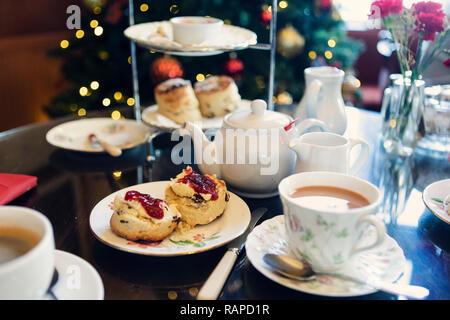 Cream tea in front of Christmas tree, Cornwall, UK - Stock Photo