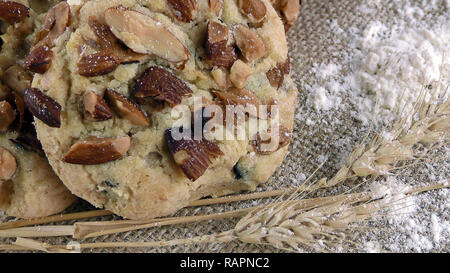 Sugarly Chocolate Chip Cookie Mixed Ready to Eat - Stock Photo