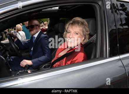 Esther Rantzen leaves Buckingham Palace after receiving damehood from the Princess Royal during an investiture ceremony in London  Featuring: Esther Rantzen Where: London, United Kingdom When: 25 Jun 2015 Credit: Steve Finn/WENN - Stock Photo