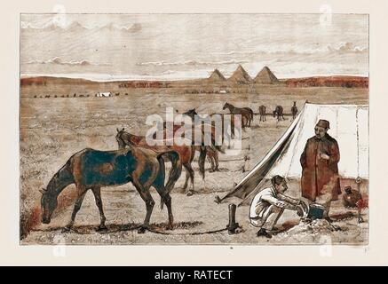 CAVALRY HORSES AT GRASS, CAIRO, EGYPT, 1883. Reimagined by Gibon. Classic art with a modern twist reimagined - Stock Photo