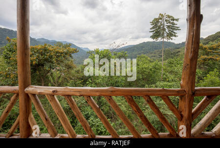 view from deck of room in Buhoma Community Haven Lodge of Bwindi Impenetrable National Forest Park, Uganda, Africa - Stock Photo