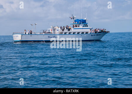 Dana Point, California - October 10, 2018: This whale watching boat was seen of of the coast of California. Tourists are seen at it's bow taking pictu - Stock Photo