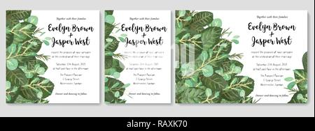 Vector A set of weddings invitations, greeting cards, letters, banners, certificates. Summer green leaves and twigs of eucalyptus, roses, and wax are  - Stock Photo