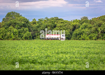 A fuel carry tank truck driving through a large farm of soybean in Brazil - Stock Photo