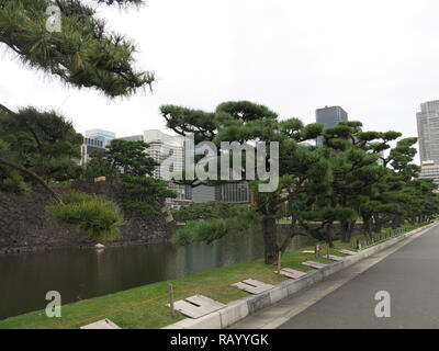 View of the old moat and stone walls of the Imperial Palace East Gardens, set against the modern office blocks of 21st century Tokyo, Japan - Stock Photo