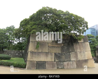 View of one of the giant stone walls in the Tokyo Imperial Palace East Gardens; October 2018 - Stock Photo