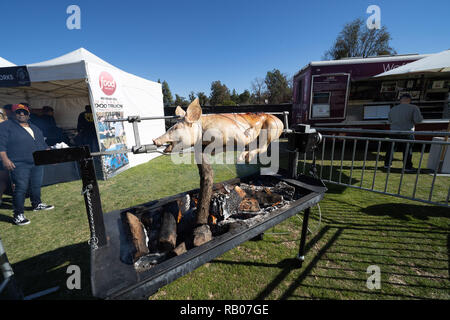 Pasadena CA. 01st Jan, 2019. VIP event cooking a pig before the Washington Huskies vs Ohio State Buckeyes at the Rose Bowl in Pasadena, Ca. on January 01, 2019 (Photo by Jevone Moore) Credit: csm/Alamy Live News - Stock Photo