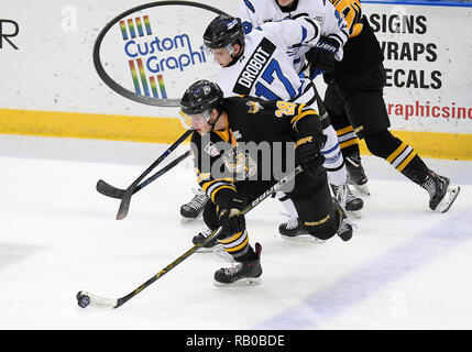 Fargo, ND, USA. 5th Jan, 2019. Green Bay Gamblers forward Noah Prokop (28) skates with the puck during a USHL game between the Green Bay Gamblers and the Fargo Force at Scheels Arena in Fargo, ND. Fargo defeated Green Bay 4-2. Photo by Russell Hons/CSM/Alamy Live News - Stock Photo