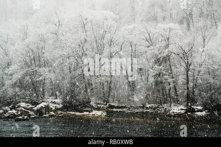 winter forest and rover landscape during heavy snowfall - Stock Photo