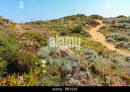 footpath in spring at the Algarve, Portugal - Stock Photo